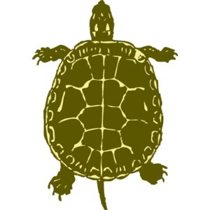 johnny automatic turtle Thumbnail