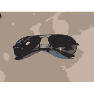 Sunglasses from another angle Thumbnail